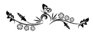frise papillon
