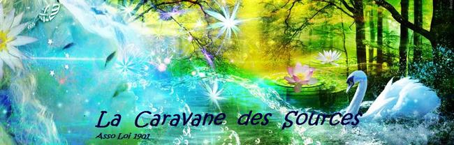 Banner_of_caravane