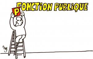 blog-domtika-ponction publique
