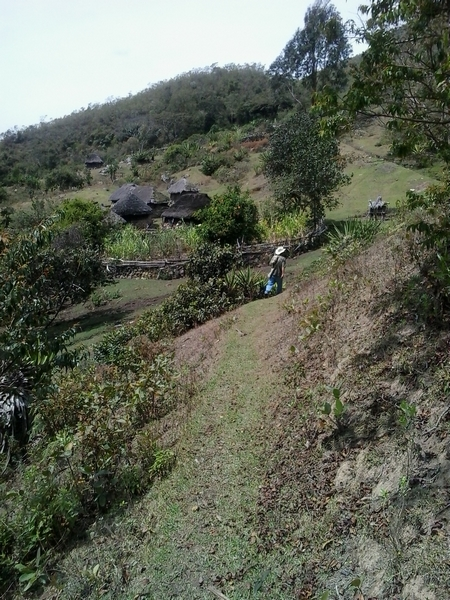 village du Mamo