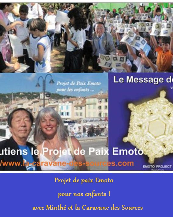 flyer emoto peace project